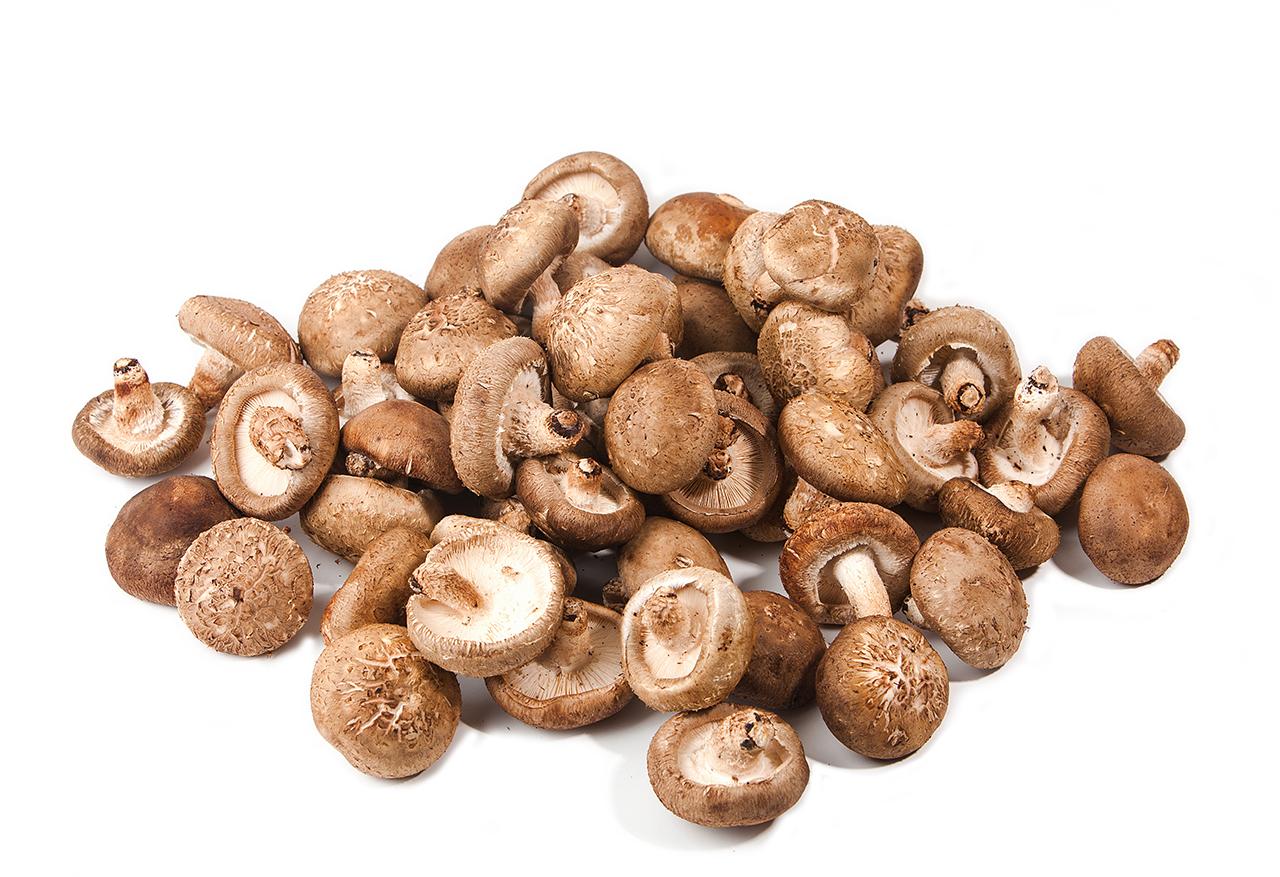 Shiitake mushroom  (Lentinula edodes)
